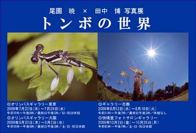 tombo_no_sekai_dm.jpg