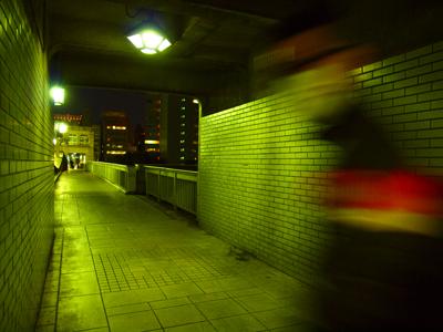 P1010087.jpg