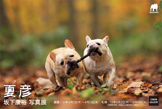 postcarda.jpg